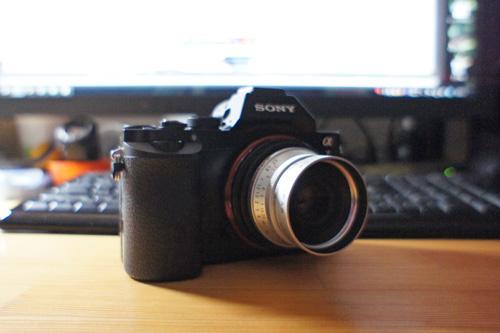 DSC07564.jpg